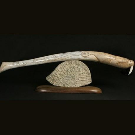 Плывущий морж